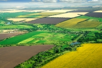 Străinii deţin deja o suprafaţă impresionantă din terenurile României. Ce pierdem noi şi ce câştigă ei?