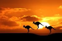 10 Australia