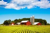 România, cumpărată de străini? Terenurile agricole, afacerea anului 2014