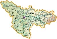 1 Timis