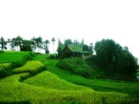 Ipoteca Verde: un nou credit, pentru locuinţe care produc bani şi îşi plătesc singure ratele
