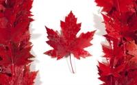 10 Canada