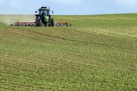 Agricultorii români nu vor să iasă în întâmpinarea cererii
