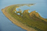 Insula Sacalin, lângă Sfantu Gheorghe: pământul nou, imposibil de cumparat, pentru care ...