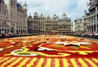 Grand Plance, Bruxelles