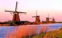 5 Olanda