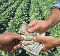 bani agricultura