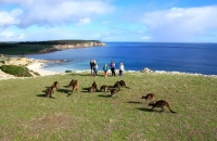 7 Australia