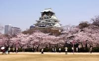 8 Osaka
