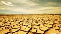 Terenuri fertile, transformate în deșert de lăcomia agricultorilor. ...