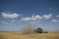 Românii îşi fac mai puţine firme de imobiliare şi mai multe de agricultură