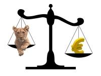 Creditul pentru Prima Casă: mai avantajos în EURO sau în LEI?