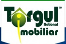 TNI - instrument de marketing imobiliar !