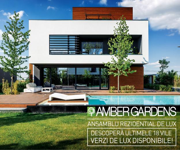 amber300.jpg