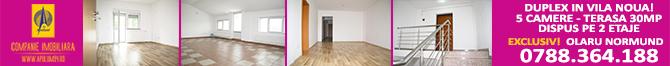 apartament_serbanvoda.jpg